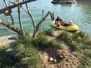 Geocaching sur le Lac Léman