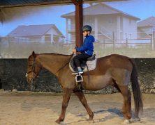 Esteban et le cheval Py – Vacances – 102019