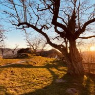 Soirée en Amoureux – Chateau d'Allinges – 022020